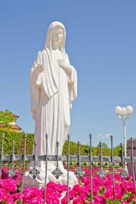 jmj-pilgrims-Mary-Medjugorie-Pilgrimage